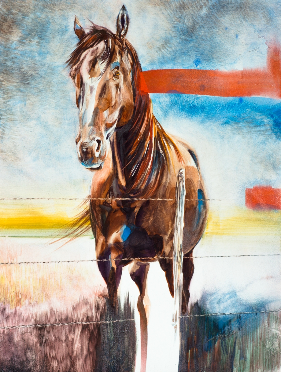 Untitled Horse 1